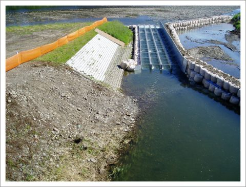 護岸工事 (増水に対応)
